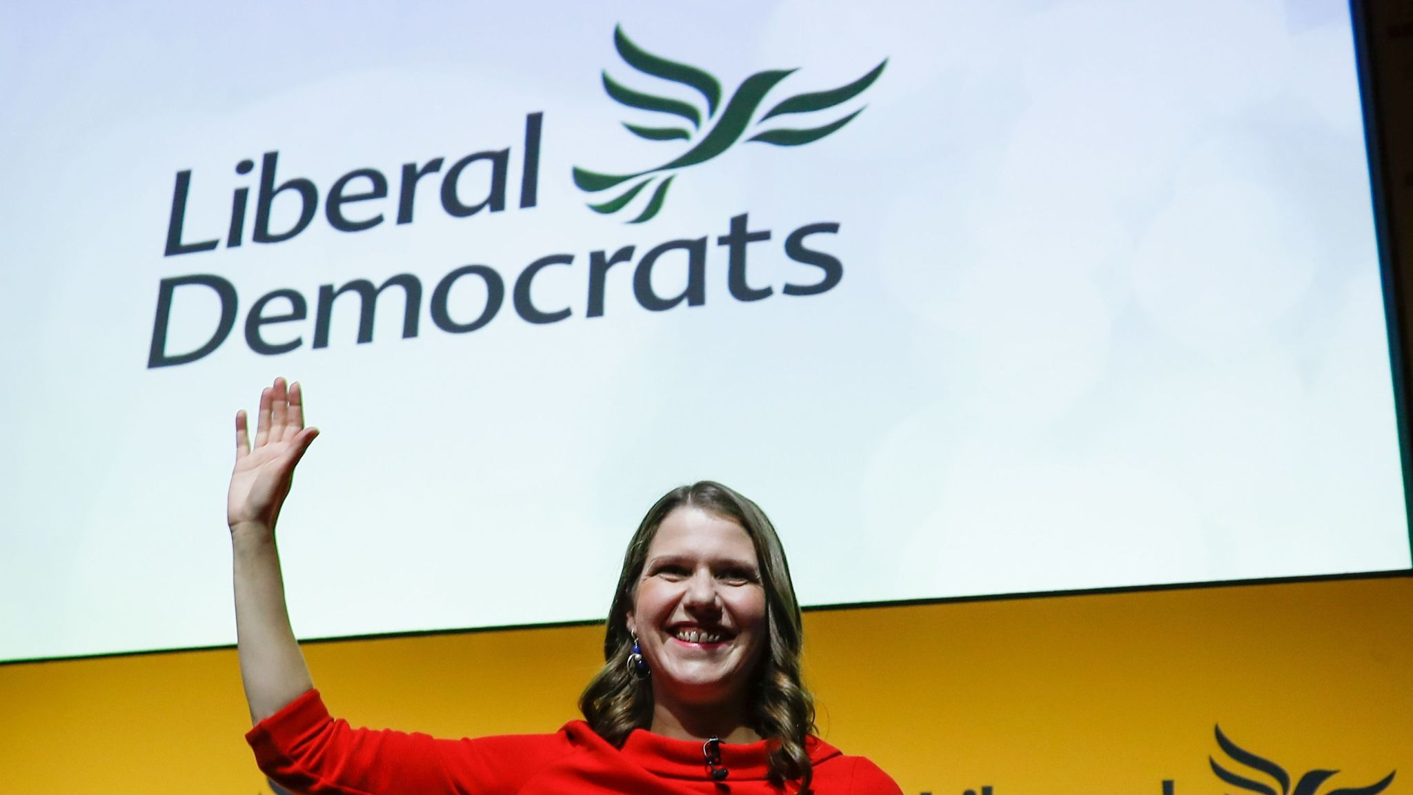 The Lib Dems are using data to profile every voter in UK - and give you a score