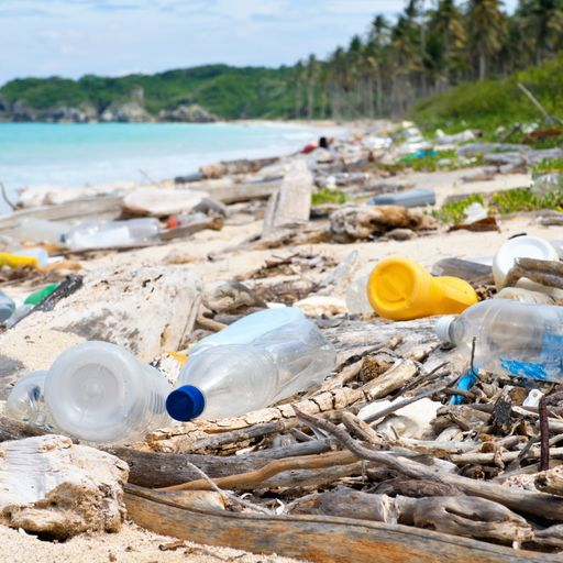 Documentary: Plastic pollution in our oceans