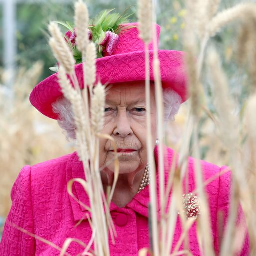 Queen approves PM's request to suspend parliament