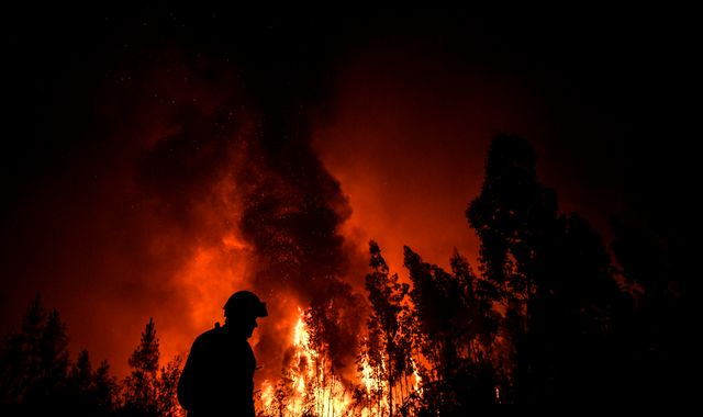 Nine injured as 1,000 firefighters battle wildfires in Portugal