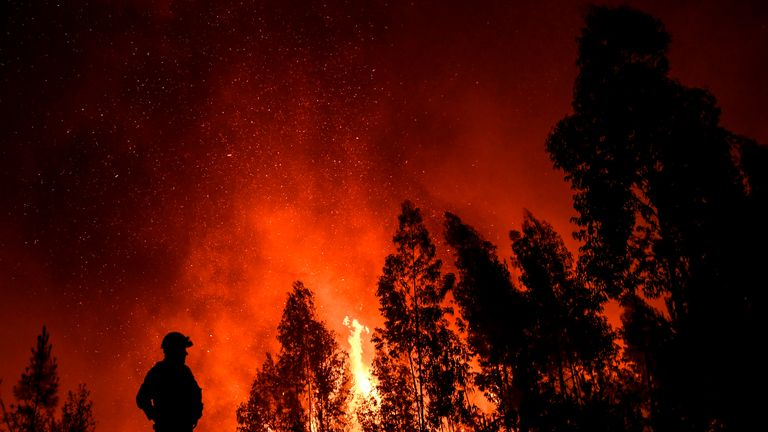 A firefighter monitors the progression of a wildfire at Amendoa in Macao, central Portugal on July 21, 2019. - More than a thousand firefighters battled to control wildfires in central Portugal that have forced village evacuations, in a region where dozens were killed in huge blazes in 2017. The firefighters were deployed to tackle three fires in the mountainous and heavily forested Castelo Branco region, 200 kilometres north of Lisbon, according to the website of the Civil Protection. (Photo by PATRICIA DE MELO MOREIRA / AFP)        (Photo credit should read PATRICIA DE MELO MOREIRA/AFP/Getty Images)