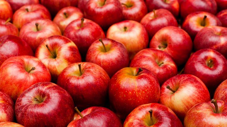 Apples contain an average of 100 million bacteria, scientists say