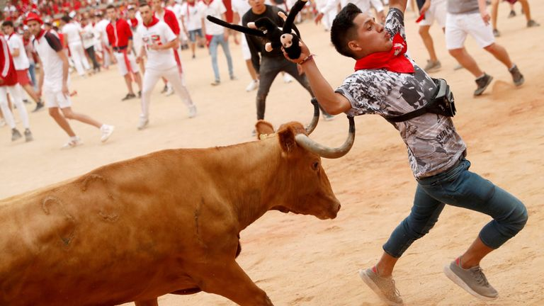 A man tries to dodge a bull on the final day of the 2019 festival
