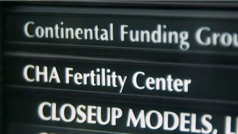 The fertility clinic which allegedly mixed up embryos is called CHA