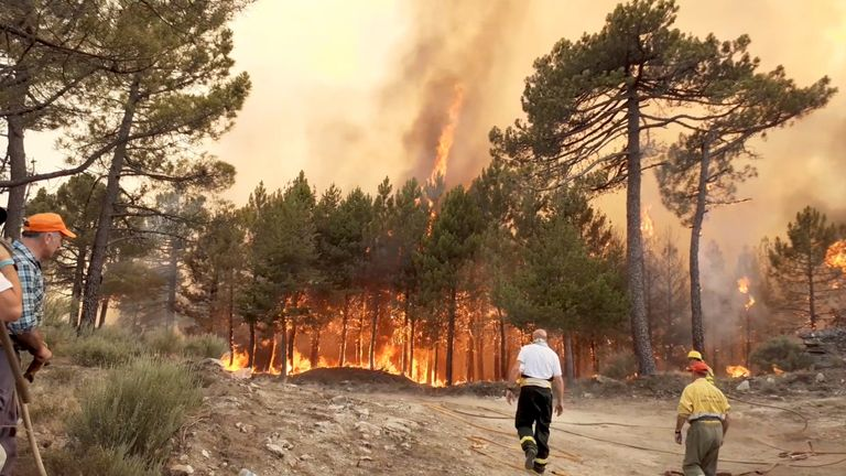 Firefighters are seen near wildfires near Cuevas del Valle in Spain in June