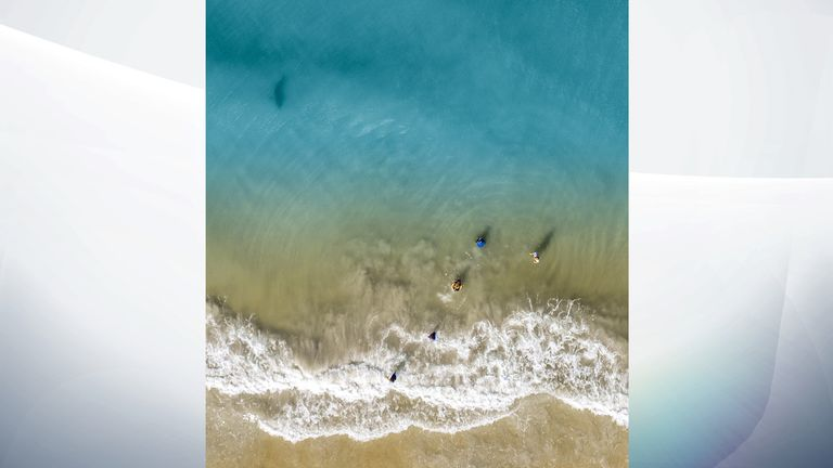 Mr Waton's spotted the shark swimming near his children on his drone camera. Pic: Dan Watson