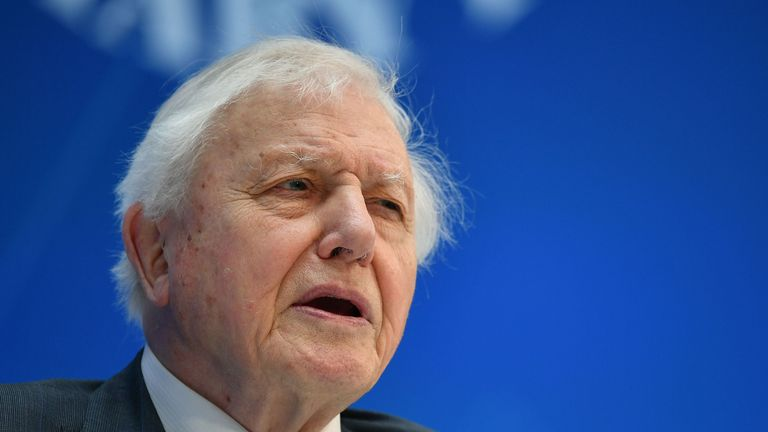 Broadcaster and natural historian David Attenborough