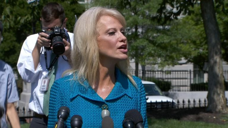 Senior Trump aide Kellyanne Conway asked a reporter his ethnicity when asked where it was Trump wanted the congresswomen to 'go back to'