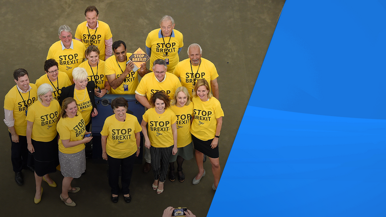 The Lib Dems dressed in 'stop Brexit' shirts in the European Parliament