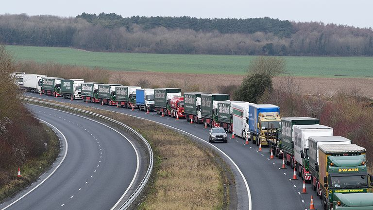 The Government has predicted delays at Dover could last up to six months
