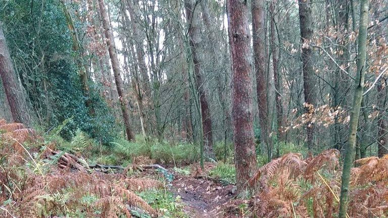 Branches have been placed across the trails to block cyclists from getting through comfortably. Pic: Chris Davenport