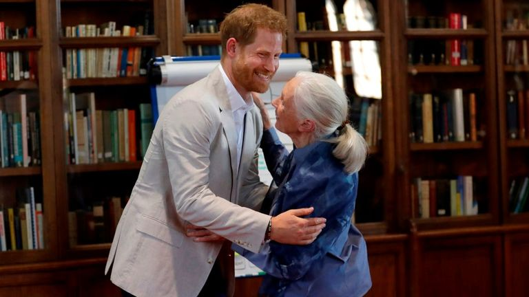 The Duke of Sussex embraces Dr Jane Goodall at a 'Roots and Shoots' global leadership meeting in July