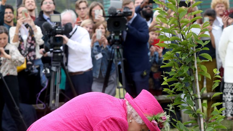 Queen Elizabeth II plants a tree during a visit to the NIAB, (National Institute of Agricultural Botany) on July 09, 2019 in Cambridge
