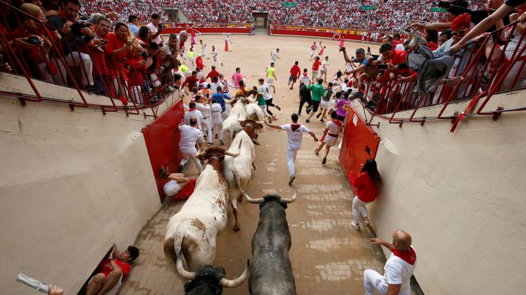 The animals are killed in the bull ring after the festival each year