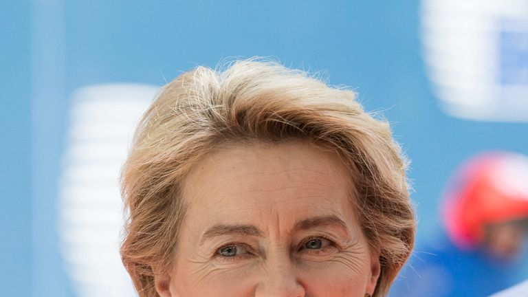 MEPs will vote whether or not approve Ursula von der Leyen as their first commission president