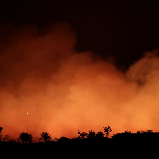 Brazil's president to send army in to tackle wildfires