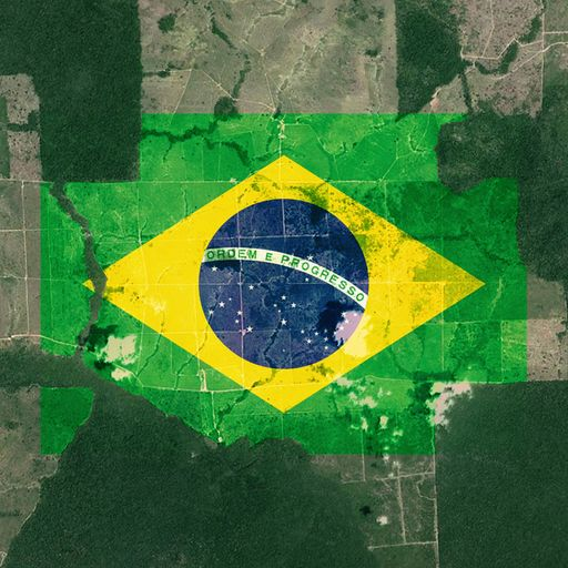 Brazil's rainforest: Back under attack