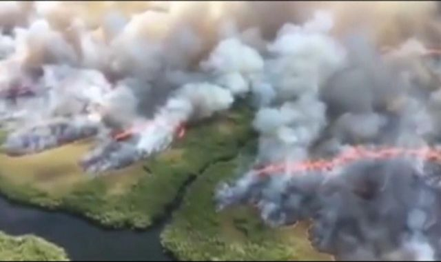 Million hectares lost in Bolivia fires as Amazon continues to burn