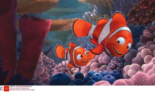 Finding Nemo and Harry Potter 'do not inspire demand for pets', new study says