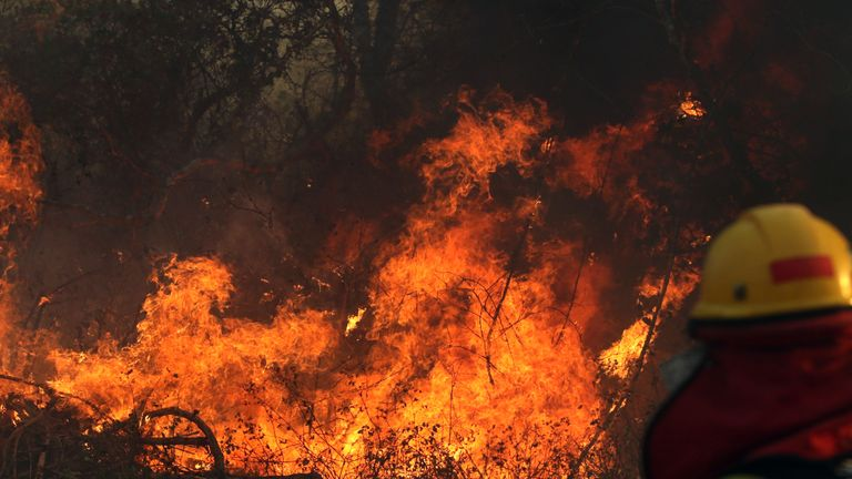 "A firefighter works during a wildfire near Robore, Santa Cruz region, eastern Bolivia on August 22, 2019. - Up to now, wildfires in Bolivia have devastated about 745,000 hectares of forests and pasturelands. Neighboring Peru, which contains much of the Amazon basin, announced it was ""on alert"" for wildfires spreading from the rainforest in Brazil and Bolivia. (Photo by STR / AFP)        (Photo credit should read STR/AFP/Getty Images)"