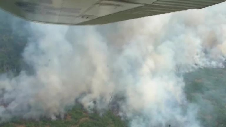 Leonardo DiCaprio falsely accused of financing Amazon fires