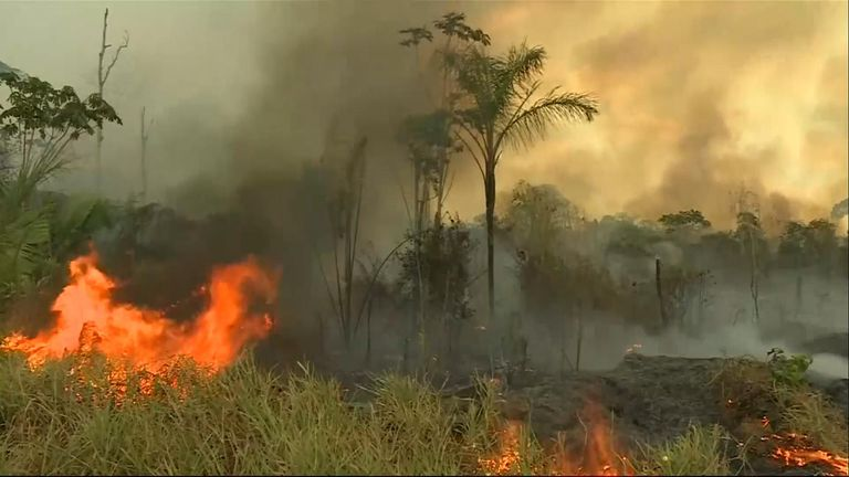 South American countries are to meet next week to discuss their response to the fires burning in the Amazon rainforest
