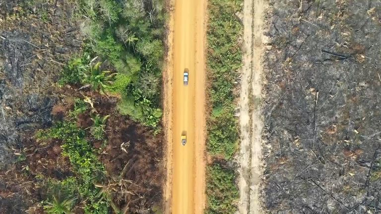 The Trans Amazonian highway cuts through the rainforest