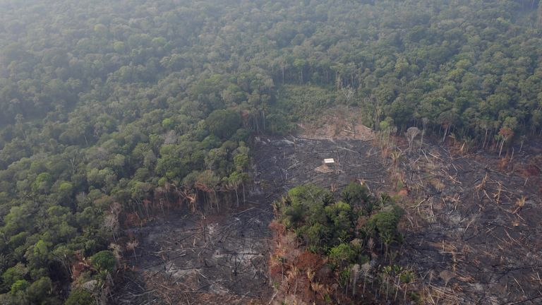 An aerial view of a deforested plot of the Amazon near Humaita in Brazil