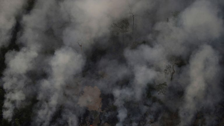 Brazil's official monitoring agency reported a sharp increase in Amazon wildfires this year