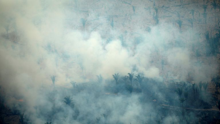 An aerial view of a tract of the Amazon jungle burning as it is being cleared by loggers and farmers in Boca do Acre, Amazonas state, Brazil August 24, 2019