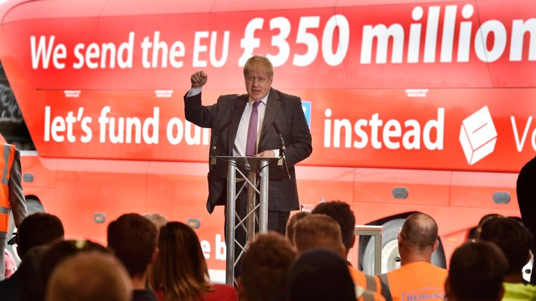 Marcus Ball brought the action over Boris Johnson's EU bus claim in 2016
