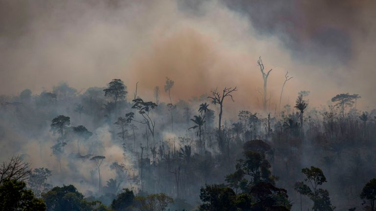 Smokes rises from forest fires in Altamira in Brazil's Para state