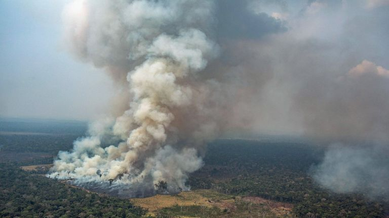Smoke rising from the fire at the Amazon forest in Novo Progresso in the state of Para, Brazil. Pic: Greenpeace