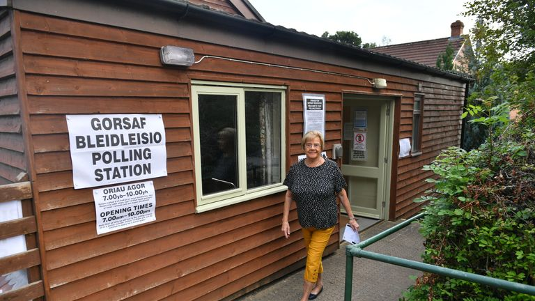 Brecon and Radnorshire by-election