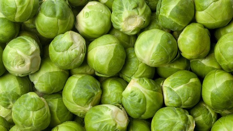 Fresh Brussel sprouts full frame