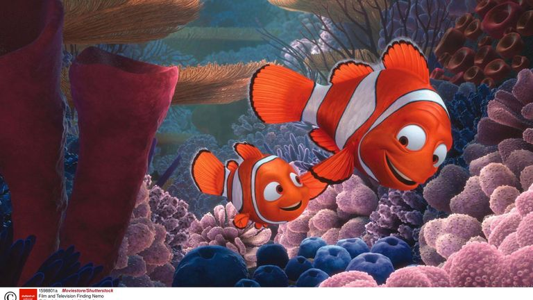 Finding Nemo was thought to have inspired a surge in clownfish purchases
