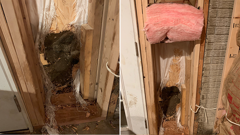 The bear escaped through a hole in the wall. Pic: Facebook/ Estes Park Police Department