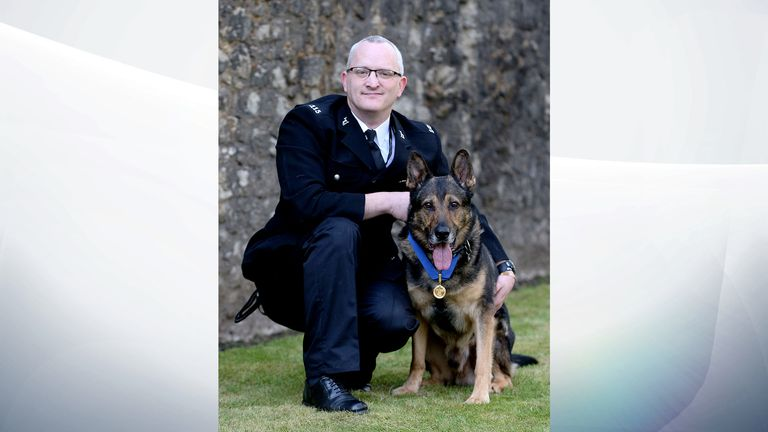 Finn's Law came into force in June after police dog Finn nearly died from stab wounds