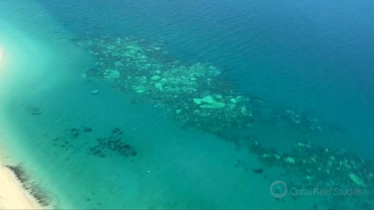 "Australian government downgrades outlook to ""very poor"" for Great Barrier Reef"