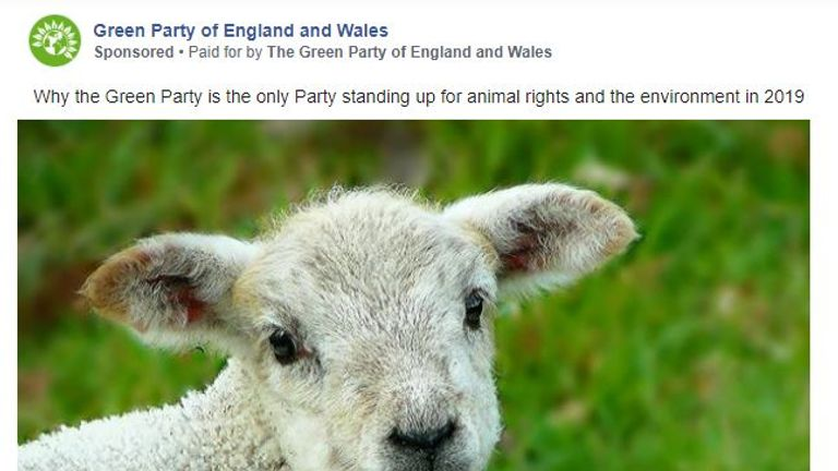 The Green Party ad features a lamb. Pic: Green Party