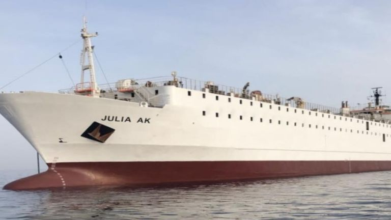 The Julia AK vessel has 5,500 young cows on board. Pic: Talia Shipping Line Co Sarl
