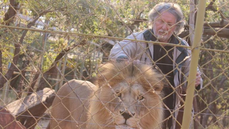 Leon van Biljon is said to have raised the animals as cubs. Pic: Mahala View Lion Game Lodge