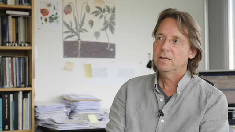 Jan Ramaekers, professor of psychopharmacology at Maastricht University