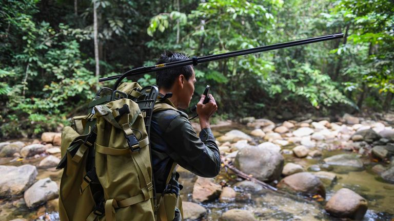 The search is expanding into the dense jungle around the hotel