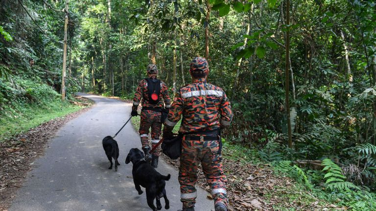 Sniffer dogs are being used in the search