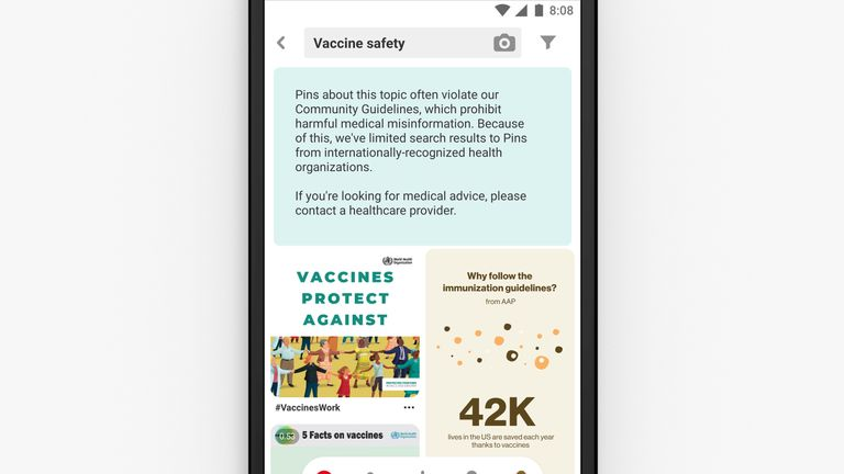 An example of the results a search for 'vaccine safety' will serve up. Pic: Pinterest