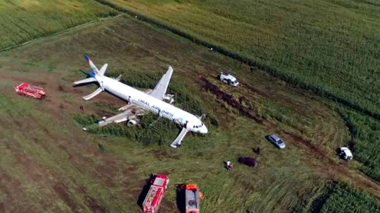 A Russian Ural Airlines' A321 plane after an emergency landing in a cornfield near Ramenskoye, outside Moscow