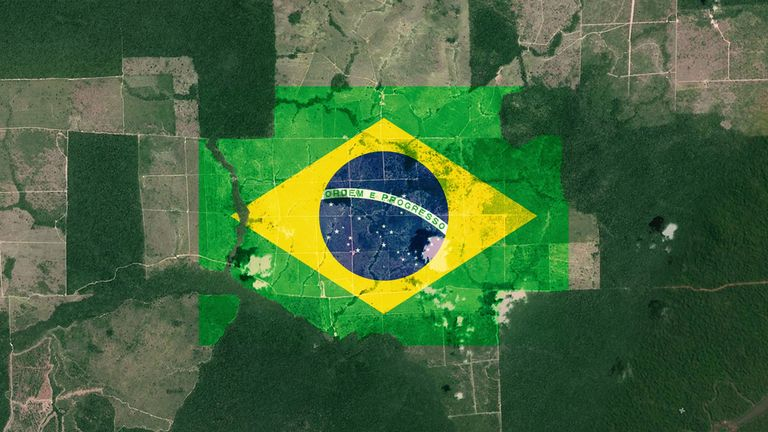 Brazil's rainforests are under threat again