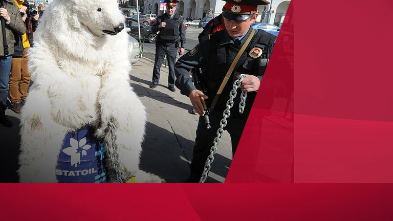 Greenpeace activists wearing polar bears costumes outside Norwegian oil and gas group Statoil's office in Moscow, on April 25, 2013, after their staged show against Statoil's planned drilling in the Arctic. According to Greenpeace the staged show was aimed to draw attention to the threats of the catastrophic climate and environment consequences of Arctic oil drilling