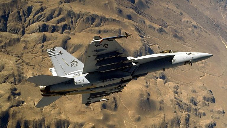 The plane that crashed was a single-seater Super Hornet. File pic